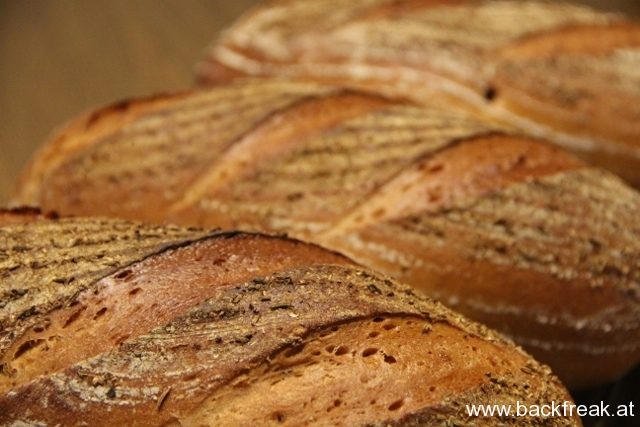 Backen, Brot und Bloggen: ein Interview mit dem Backfreak